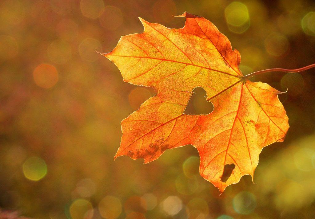 Gemeindeleben in den Herbstferien